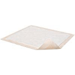 Attends Healthcare Products Dri-Sorb ® Plus Underpad 23